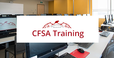 CFSA Training, Southern Network CFS